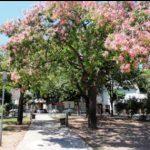 Plaza Martín Fierro: La Rioja y Cochabamba