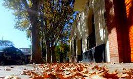 vereda de otoño