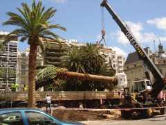 Plazoleta I. Rabin en el barrio de Retiro