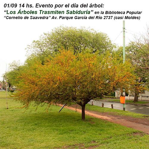 El 1° de septiembre habrá Festejos por el Día del Árbol